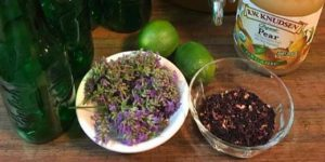 Kombucha & Fire Cider Tonics @ Appalachian Acupuncture and Healing Arts | Johnson City | Tennessee | United States